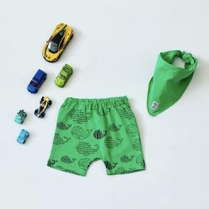 Spodenki green + apaszka dla chłopczyka 56-92 cm